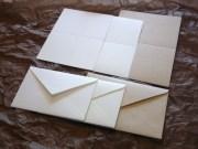 メッセージカード 2折タイプ 封筒付き