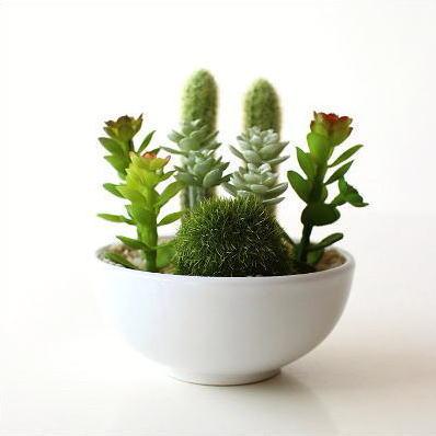 フェイクグリーン CT触媒 消臭 グリーン 観葉植物 サボテン 多肉植物 苔球 インテリア 卓上 机上 玄関 トイレ CT触媒付きフェイクグリーンのミニポットB [kkm4687]