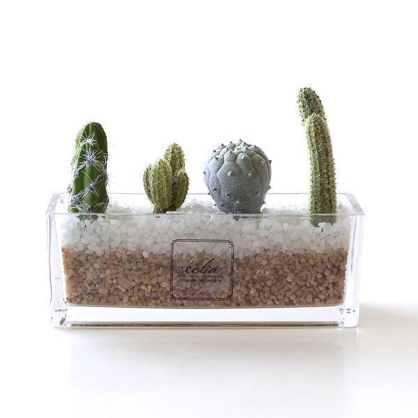 フェイクグリーン サボテン 多肉植物 おしゃれ 卓上 インテリア 寄植え 鉢植え 人工観葉植物 イミテーショングリーン フェイクサボテンの寄せ植え [kkm9085]