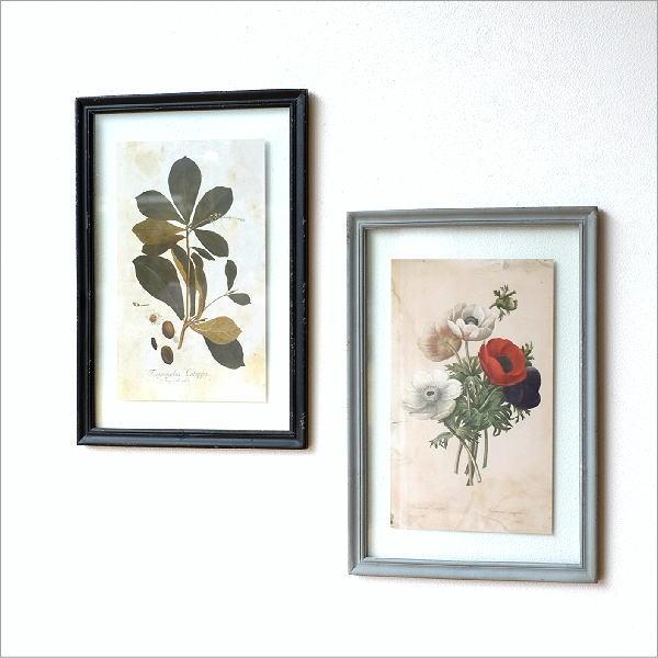 アンティークな植物画フレーム 2タイプ
