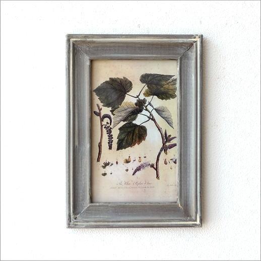 ピクチャーフレーム 壁掛け アートフレーム 植物 アンティーク クラシック レトロ ウォールアート 壁 インテリア 画 絵 おしゃれ ピクチャーフレーム プラント