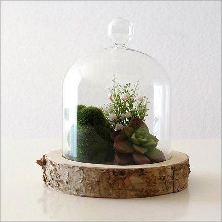 白樺のガラスドーム