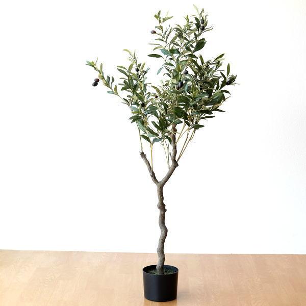 フェイクグリーン オリーブの木 【送料無料】 [spc1450]