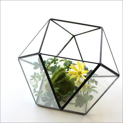 テラリウム ガラス 小物入れ アイアン 観葉植物 多肉植物 サボテン 観賞 ディ スプレイ かわいい インテリア 小さなガラスのテラリウムB