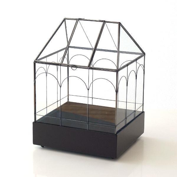 メタルとガラスのテラリウムハウス [spc7387]