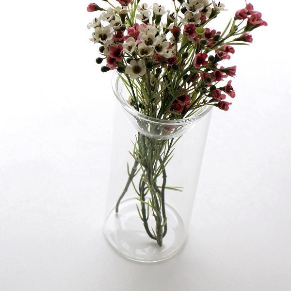 花瓶 ガラス フラワーベース 花器 容器 水耕栽培 水栽培 多肉植物 切り花 ヒヤシンス 球根 皿 バルブガラスベース [spc9075]