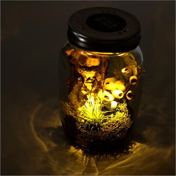 LEDグラスジャーL [spc9218]