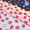 【メール便2mまで】フレッシュストロベリーオックス生地(1317-2) いちご くだもの コットン 女の子 フルーツ かわいい 布 柄 メール便OK レッスンバッグ エプロン 雑貨