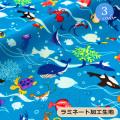 【メール便不可】水族館フレンドラミネート加工生地(1343) | 魚 さかな  カメ ニモ レッスンバッグ ハンドメイド ラミネート