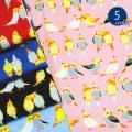 【メール便2mまで】ラブリーおかめインコシーチング生地(1554) 鳥/かわいい/動物/レッスンバッグ/幼稚園/手作り/女の子