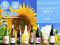 【送料無料】ナチュラルワイン頒布会2021夏コース(ワイン計9本)【7月/8月/9月お届け】