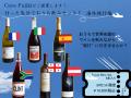 [ワインセット]行った気分でお家飲みセット~海外旅行編~(ワイン6本入り)