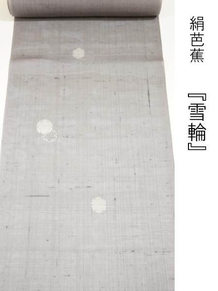 絹芭蕉 雪輪1
