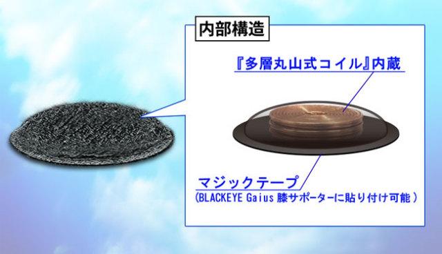 ブラックアイ ガイアス 多層丸山式チップ(内臓部)650px【丸山式シリーズ】