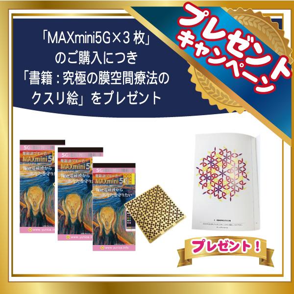 「MAX mini5G×3枚」+「書籍 :究極の膜空間療法のクスリ絵」プレゼント!【2021年2月24日迄】【丸山修寛シリーズ】