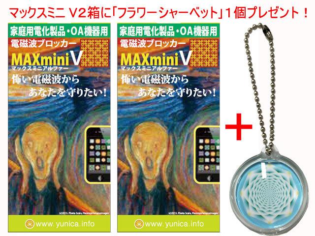 マックスミニV2箱+フラワーシャーベットキャンペーン!
