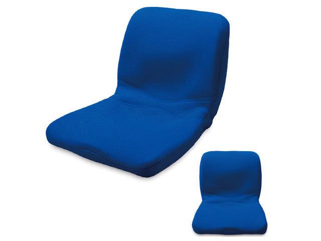 ピント(ブルー) main (背筋、座る)