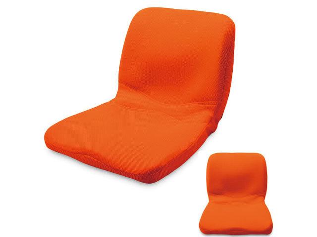 ピント(オレンジ) main (背筋、座る)