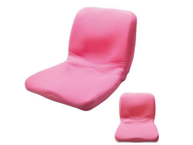 ピント(ピンク) main (背筋、座る)