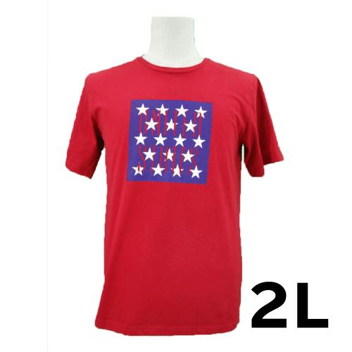 【美品】BROWNY 半袖Tシャツ 2L USED 古着