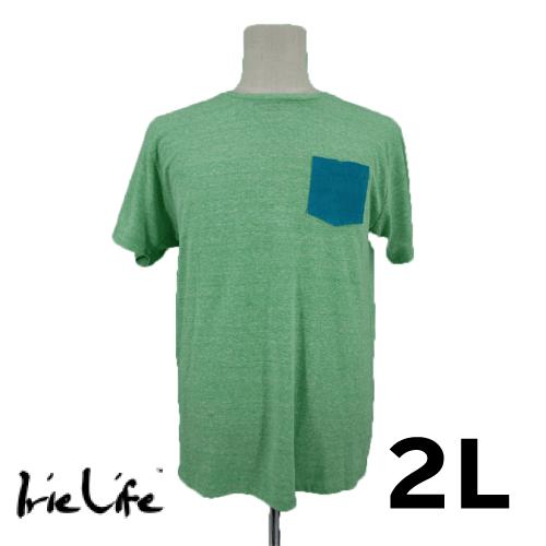 【美品】IRIE LIFE 半袖Tシャツ 2L グリーン USED 古着
