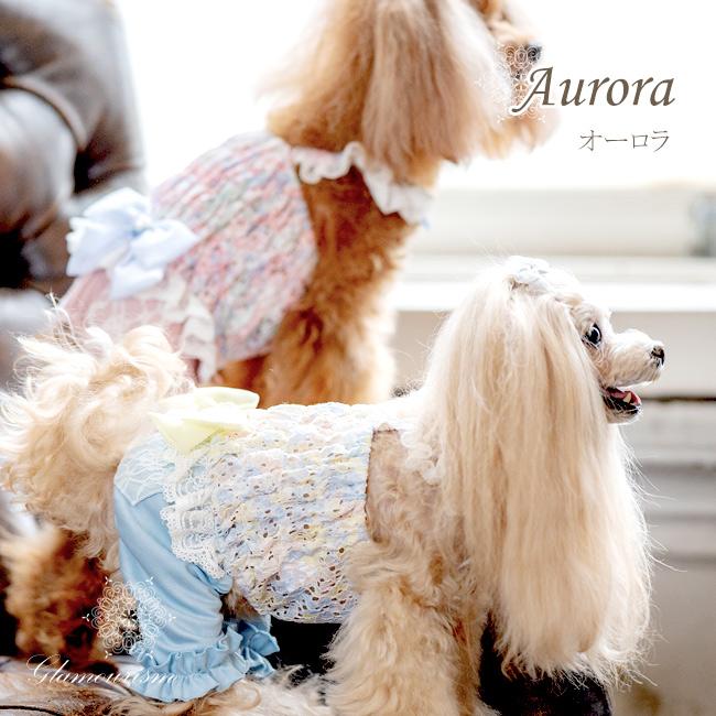 オーロラ(Aurora)