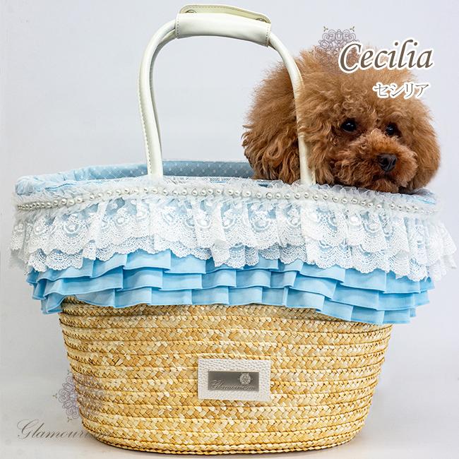 セシリア(Cecilia)