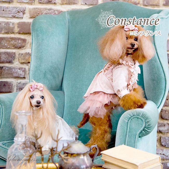 コンスタンス(Constance)