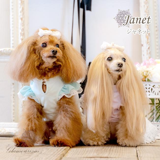 ジャネット(Janet)
