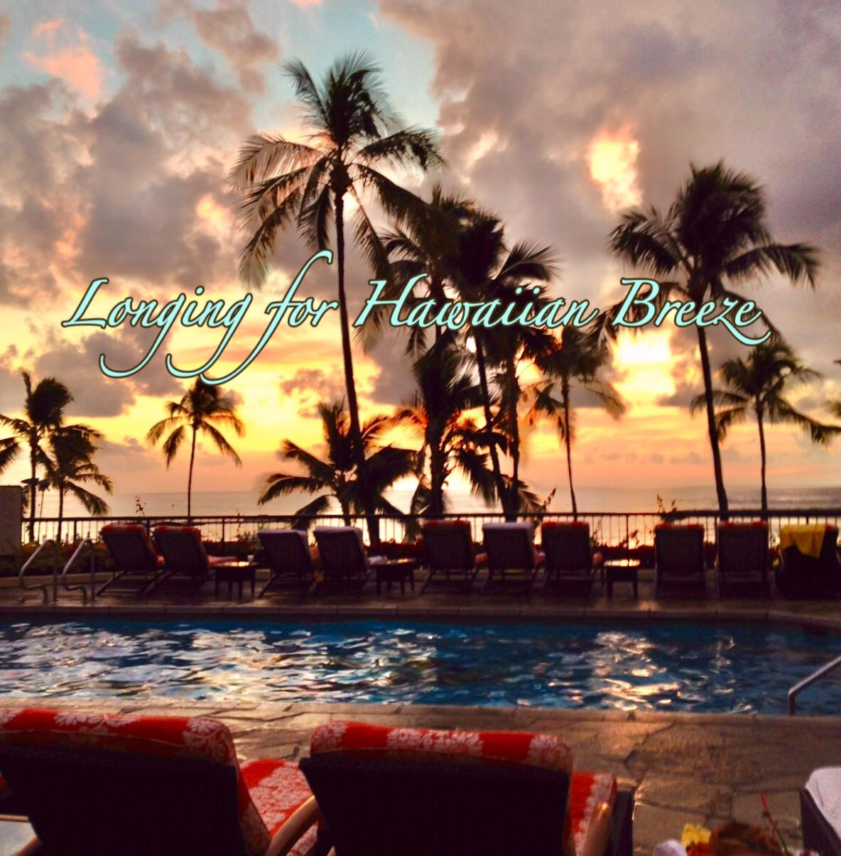 限定グラノーラ ハワイアン*コナ/ストレート * Hawaiian Kona Granola/Straight 270g