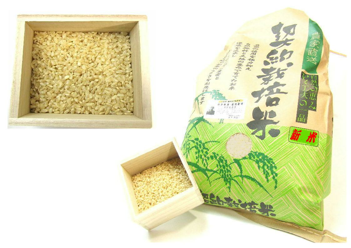 2017年和多農産こしひかり玄米