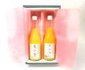 柑橘ジュースギフト