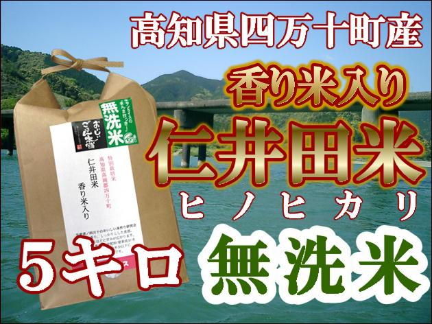 仁井田米5k