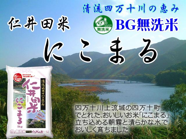 令和2年産 高知県産 BG無洗米 仁井田米にこまる5kg