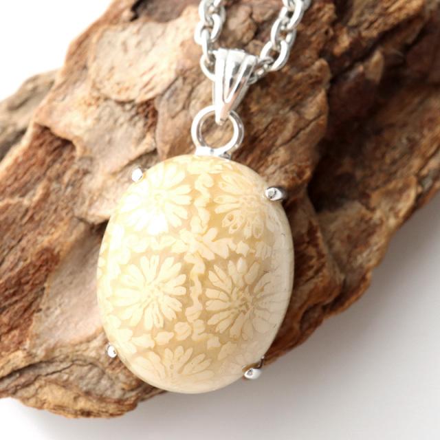 フォシルコーラル ペンダント 珊瑚化石 1点物 Silver925 天然石