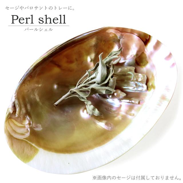 パールシェル ホワイトセージの浄化皿 貝殻 小物入れ オーストラリア産 イケチョウ貝