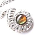 アンモライト ネックレス 天然石 ペンダント Silver925 生物起源の宝石 カナダ産