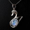 レインボームーンストーン(ホワイトラブラドライト) ネックレス スワン Siver925  天然石