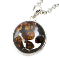 パラサイト隕石 ネックレス 鉄隕石 ケニア産 大衛星 六芒星 ペンダント かんらん石 1点物