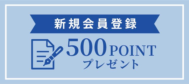 新規会員と六 500POINTプレゼント