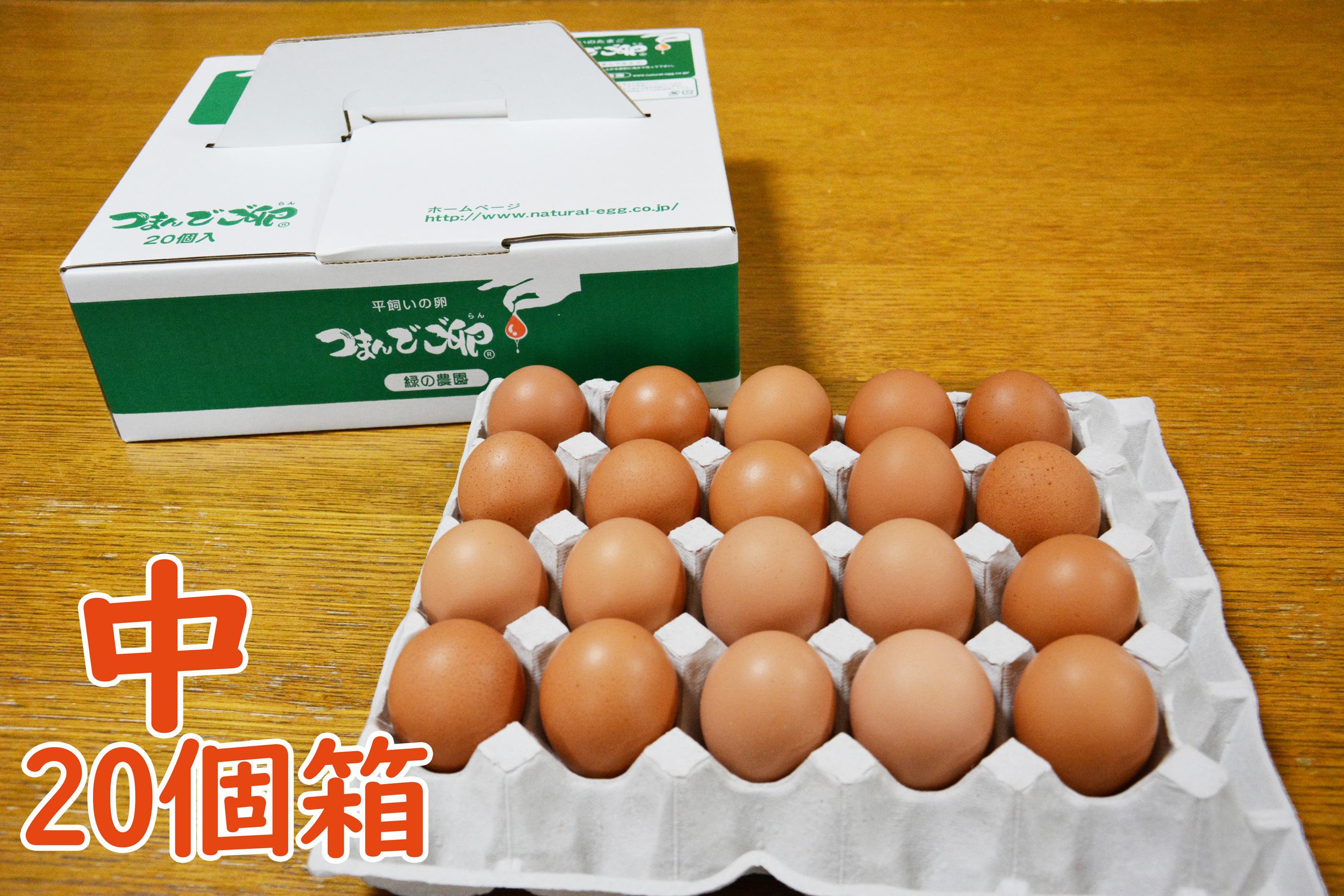 つまんでご卵 中サイズ(20個箱)
