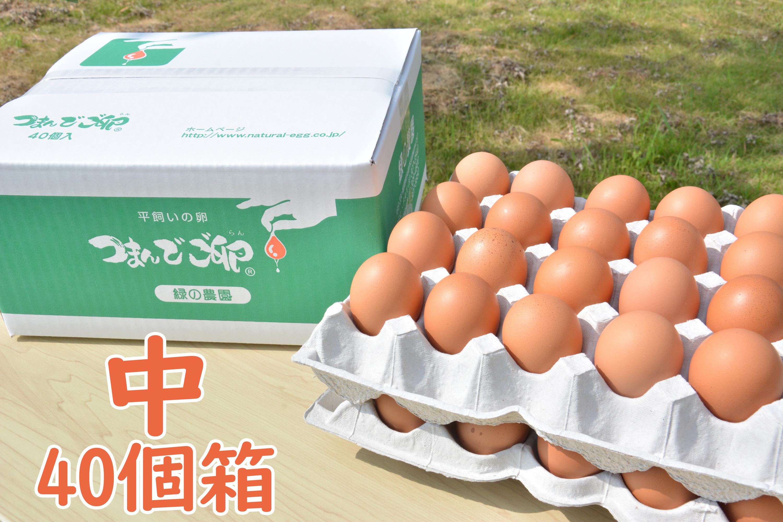つまんでご卵 中サイズ(40個箱)
