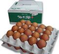 つまんでご卵40個(贈答箱)