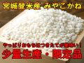 H28年産 宮城登米産 みやこがね もち米 2kg