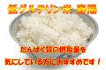 H30年産 宮城登米産 低グルテリン米「春陽」 白米 10kg