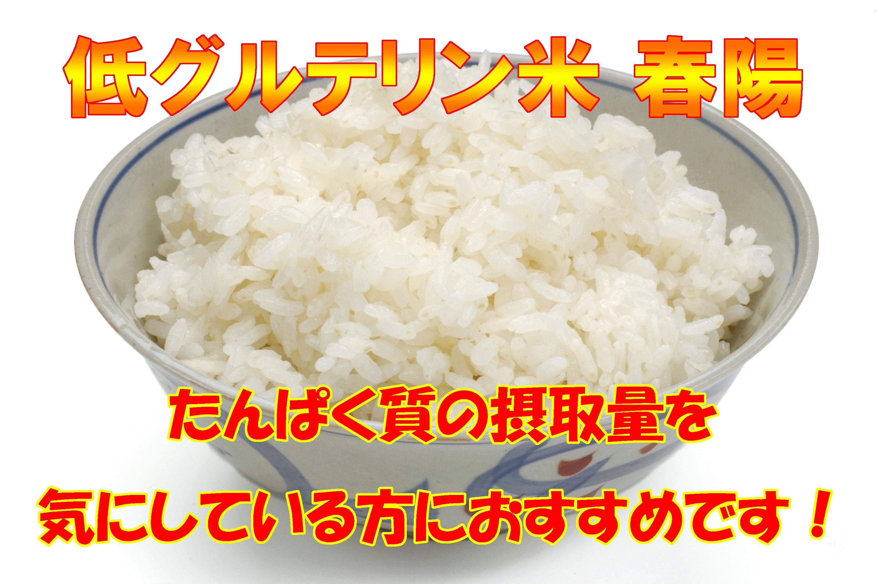 H30年産 宮城登米産 低グルテリン米「春陽」 白米 5kg