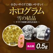 【ゆうパケット対象商品】高品質ホログラム雪の結晶 0.5g[会員割引対象]