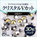 silver_30.jpg