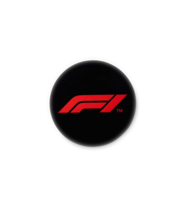 Formula1(F1公式)ロゴマグネット