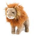 101 TST ライオン